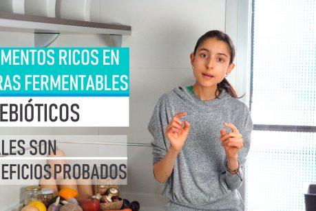 Prebióticos, alimentos ricos en fibras fermentables, tipos de fibra I Cuáles son y sus beneficios
